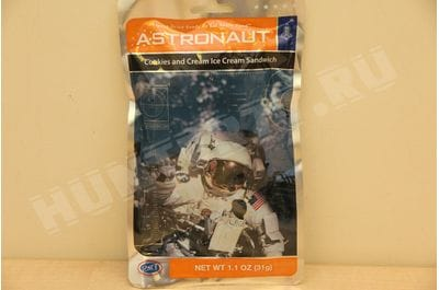 Astronaut Cookies and Ice Cream Ice Cream Sandwich